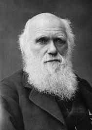 Darwin-thumbnail